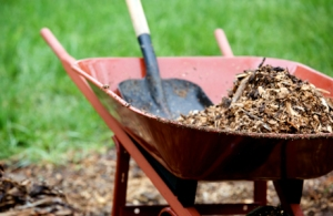 Basic_Landscaping_Materials__Supplies_9308359_460